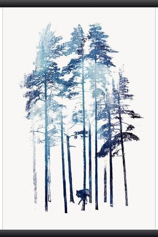 Winter Wolf Prints by Robert Farkas at AllPosters.com